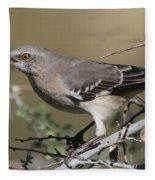 Mocking Bird With Ripe Hackberry Fleece Blanket