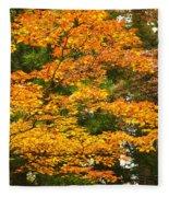 Mount Koya Koya San Japan  Fleece Blanket