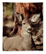 Mule Deer Doe Fleece Blanket