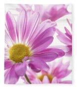 Mums Flowers Against White Background Fleece Blanket