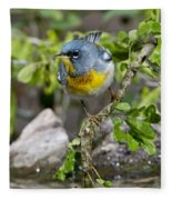 Northern Parula Fleece Blanket
