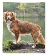 Nova Scotia Duck Tolling Retriever Fleece Blanket