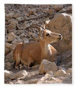 Nubian Ibex Fleece Blanket