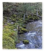 Oregon Fleece Blanket