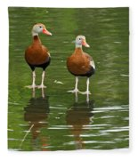 Pair Black-bellied Whistling-ducks Fleece Blanket