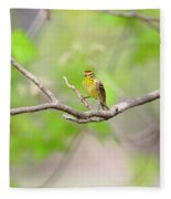 Palm Warbler Fleece Blanket