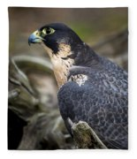Peregrine Falcon Fleece Blanket