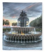 Majestic Sunset In Waterfront Park Fleece Blanket