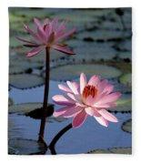Pink Water Lily In The Spotlight Fleece Blanket