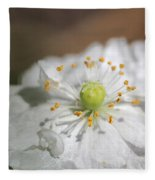 Poppy From The Angel's Choir Mix Fleece Blanket