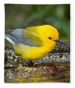 Prothonotary Warbler Fleece Blanket