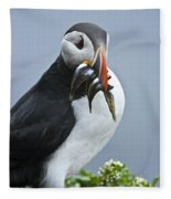 Puffin With Fish Fleece Blanket