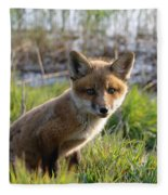 Red Fox Kit Fleece Blanket