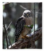 Red - Shouldered Hawk II Fleece Blanket