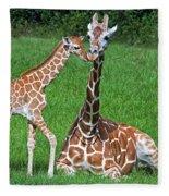 Reticulated Giraffe Calf With Mother Fleece Blanket