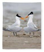 Royal Terns Fleece Blanket