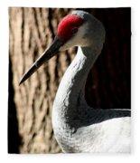 Sandhill Crane Portrait Fleece Blanket