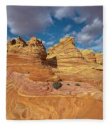 Sandstone Vermillion Cliffs N Fleece Blanket