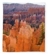 Sandstone Hoodoos Bryce Canyon  Fleece Blanket