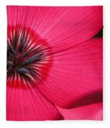 Scarlet Flax Fleece Blanket