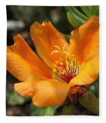 Single Portulaca Fleece Blanket