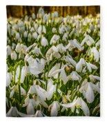Snowdrop Woods Fleece Blanket