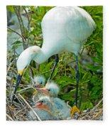 Snowy Egret Tending Young Fleece Blanket