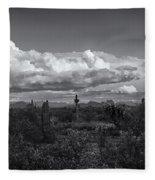 Sonoran Desert In Black And White  Fleece Blanket