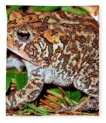 Southern Toad Bufo Terrestris Fleece Blanket