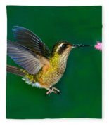 Speckled Hummingbird Fleece Blanket