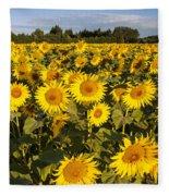 Sunflowers At Dawn Fleece Blanket