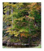 Tennessee Autumn Stream Fleece Blanket