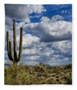 The Beauty Of The Desert Southwest Fleece Blanket