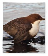 The White-throated Dipper Fleece Blanket