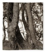 Trees Fleece Blanket