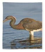 Tri-colored Heron Fleece Blanket