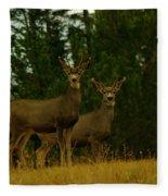 Two Young Bucks Fleece Blanket
