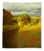 Utah Landscape Fleece Blanket