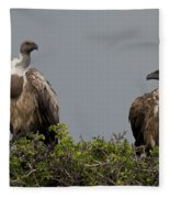 Vultures With Full Crops Fleece Blanket