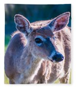 White Tail Deer Bambi In The Wild Fleece Blanket