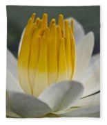 White Water Lily Fleece Blanket