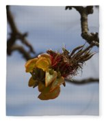 Wiliwili Flowers - Erythrina Sandwicensis - Kahikinui Maui Hawaii Fleece Blanket