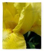 Yellow Iris Fleece Blanket