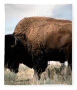 Yellowstone Bison Fleece Blanket