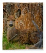 Young Mulie Fleece Blanket