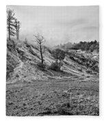 Yellowstone Fleece Blanket