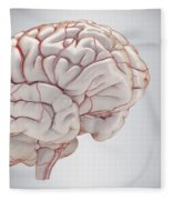 Brain With Blood Supply Fleece Blanket