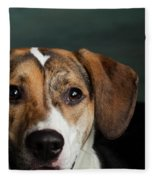 Portrait Of A Mixed Dog Fleece Blanket