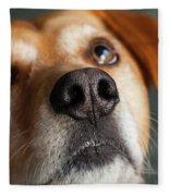 Portrait Of Red Bone Coon Mix Dog Fleece Blanket