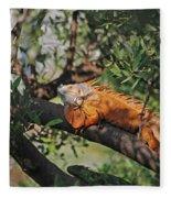 25- Iguanas Fleece Blanket